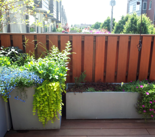Planters Add Texture