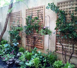 Trellises and Plants